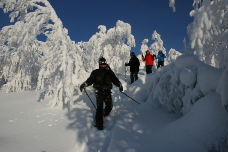 Trekking winter
