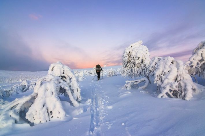 Snowshoe by visitfinland