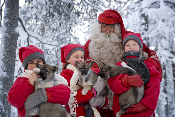 Santa elves and husky pups rovaniemi 2